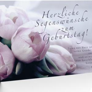 Faltkarte - Geburtstag (NEU)